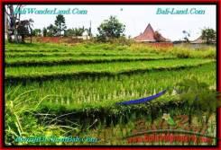 Affordable LAND SALE IN Canggu Brawa TJCG195