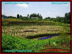 Magnificent LAND FOR SALE IN Canggu Pererenan BALI TJCG197