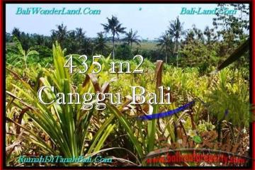 FOR SALE Beautiful PROPERTY 435 m2 LAND IN CANGGU BALI TJCG196