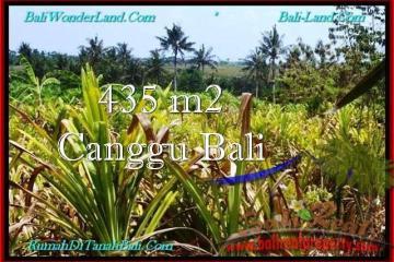 FOR SALE Beautiful PROPERTY 435 m2 LAND IN CANGGU BALI TJCG196