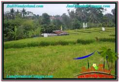 Affordable CANGGU 335 m2 LAND FOR SALE TJCG204