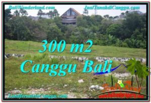 Exotic PROPERTY CANGGU BALI 300 m2 LAND FOR SALE TJCG205