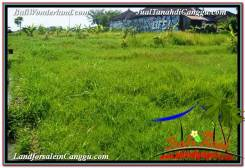FOR SALE Magnificent 2,300 m2 LAND IN CANGGU TJCG209
