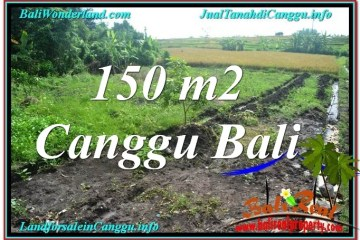 Affordable PROPERTY LAND IN Canggu Pererenan BALI FOR SALE TJCG213
