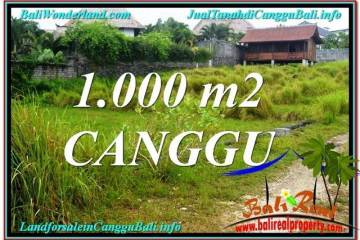 Affordable 1,000 m2 LAND IN CANGGU FOR SALE TJCG214