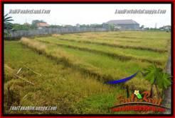 Magnificent PROPERTY LAND SALE IN Canggu Brawa BALI TJCG221