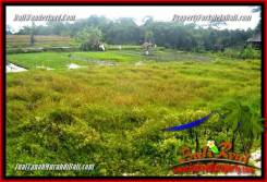 FOR SALE Exotic PROPERTY LAND IN CANGGU TJCG227