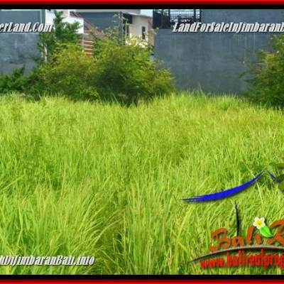 Beautiful LAND SALE IN Jimbaran Ungasan BALI TJJI124