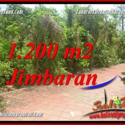 Beautiful LAND SALE IN JIMBARAN BALI TJJI128A