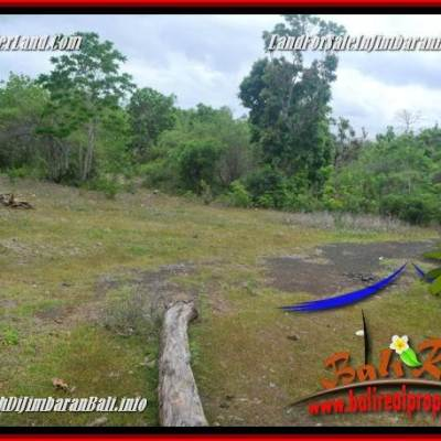 Exotic PROPERTY LAND IN JIMBARAN UNGASAN FOR SALE TJJI133