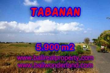 Land in Tabanan Bali for sale, Outstanding view in Tabanan selemadeg – TJTB131