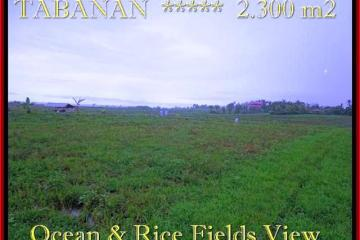 FOR SALE Affordable 2.300 m2 LAND IN TABANAN TJTB184