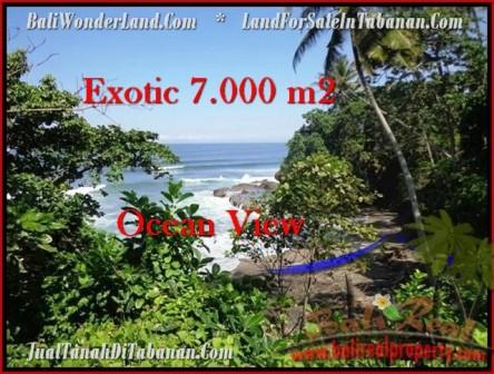 Beautiful 7,000 m2 LAND SALE IN TABANAN BALI TJTB200