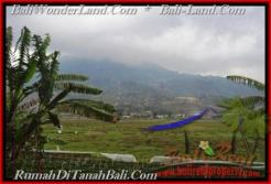 FOR SALE Beautiful 52,000 m2 LAND IN TABANAN BALI TJTB164