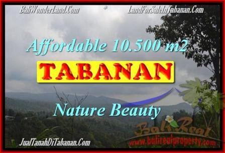 Affordable 10,500 m2 LAND IN TABANAN BALI FOR SALE TJTB165