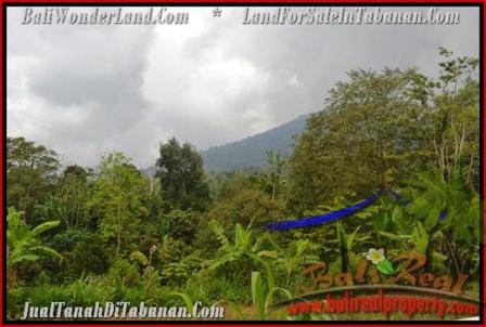 51,100 m2 LAND FOR SALE IN TABANAN BALI TJTB166