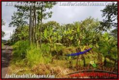 Exotic TABANAN BALI 51,100 m2 LAND FOR SALE TJTB166