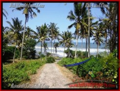 FOR SALE Affordable LAND IN Tabanan Selemadeg BALI TJTB158