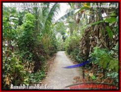 LAND SALE IN Tabanan Selemadeg BALI TJTB159