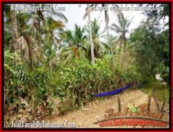Exotic PROPERTY 2,500 m2 LAND IN Tabanan Selemadeg FOR SALE TJTB160