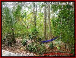 LAND SALE IN Tabanan Selemadeg BALI TJTB160