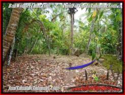FOR SALE Beautiful 8,000 m2 LAND IN TABANAN BALI TJTB161