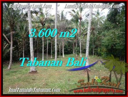 Exotic PROPERTY TABANAN LAND FOR SALE TJTB211