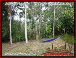Magnificent PROPERTY LAND SALE IN TABANAN TJTB211