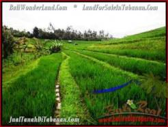 Magnificent PROPERTY LAND SALE IN TABANAN TJTB210