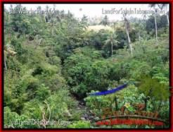 Tabanan Selemadeg BALI LAND FOR SALE TJTB205