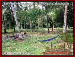 Magnificent PROPERTY 7,500 m2 LAND IN Tabanan Selemadeg FOR SALE TJTB207