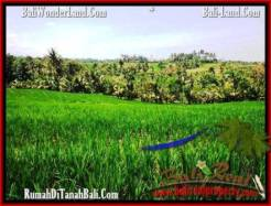 Affordable PROPERTY LAND IN TABANAN FOR SALE TJTB209