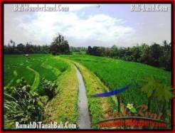 Exotic PROPERTY TABANAN LAND FOR SALE TJTB209