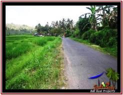 Beautiful LAND IN TABANAN FOR SALE TJTB227