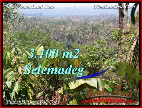 3,100 m2 LAND IN TABANAN BALI FOR SALE TJTB222