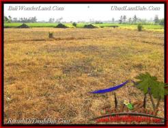 2,200 m2 LAND IN TABANAN BALI FOR SALE TJTB224