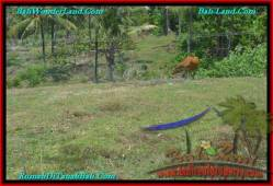 Affordable PROPERTY 1,500 m2 LAND IN Tabanan Selemadeg FOR SALE TJTB234
