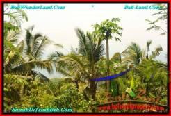 FOR SALE Affordable LAND IN Tabanan Selemadeg BALI TJTB235
