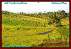 Exotic PROPERTY 1,000 m2 LAND IN Tabanan Selemadeg FOR SALE TJTB237