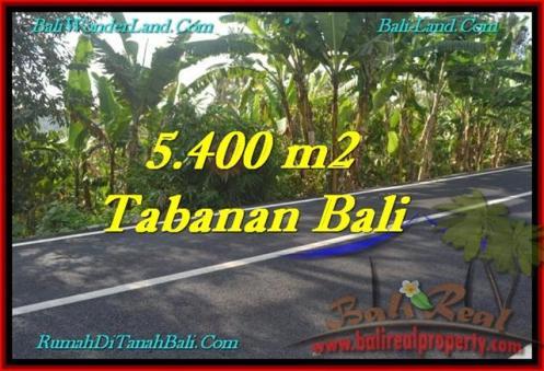 FOR SALE Beautiful 5,400 m2 LAND IN TABANAN BALI TJTB241