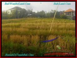 Magnificent 980 m2 LAND SALE IN TABANAN BALI TJTB244