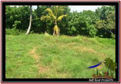 Magnificent PROPERTY Tabanan Selemadeg 6,845 m2 LAND FOR SALE TJTB245