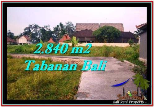 FOR SALE Affordable LAND IN Tabanan Tanah Lot BALI TJTB247