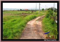 Beautiful LAND IN TABANAN FOR SALE TJTB249