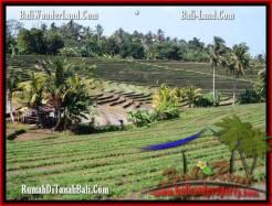Tabanan Selemadeg BALI LAND FOR SALE TJTB204