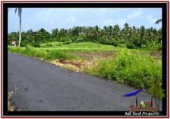 LAND SALE IN Tabanan Selemadeg BALI TJTB257