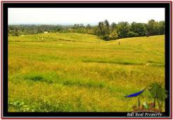 Magnificent LAND FOR SALE IN TABANAN TJTB259