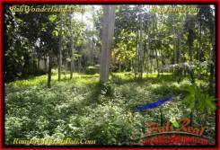 Exotic TABANAN BALI 15,550 m2 LAND FOR SALE TJTB272
