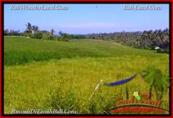 Exotic PROPERTY 6,000 m2 LAND IN Tabanan Selemadeg FOR SALE TJTB267