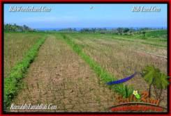 Magnificent PROPERTY Tabanan Selemadeg 6,000 m2 LAND FOR SALE TJTB268